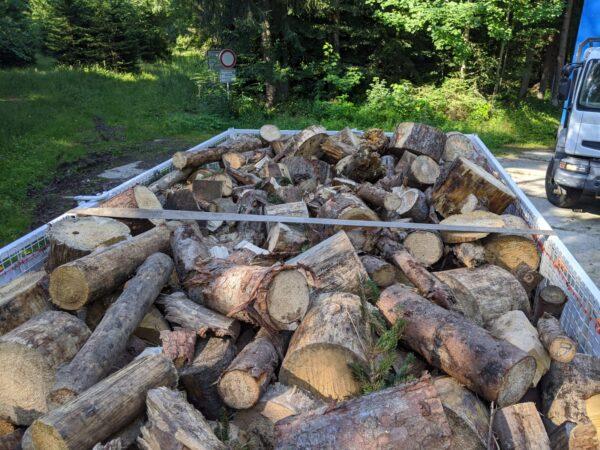 prodej odřezků dřeva